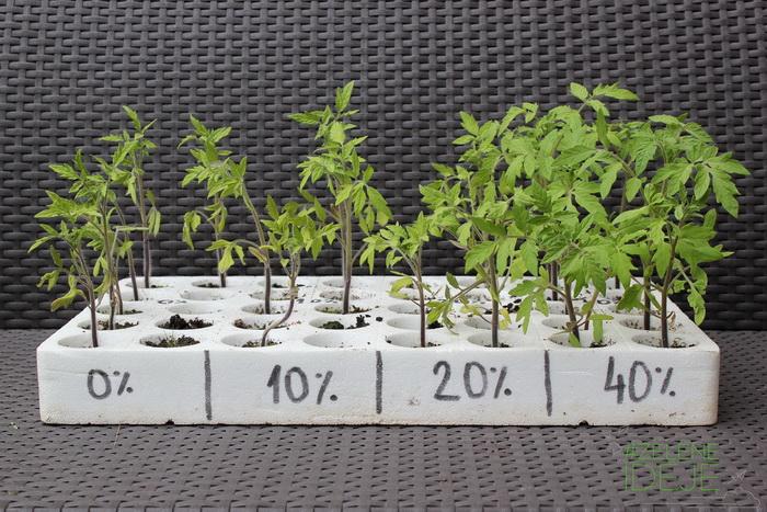 Zelene-Ideje-Aleksina-basta-testiranje-upotrebe-glistenjaka